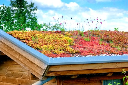 Die Dachbegrünung ist eine Spezialität der Dachdecker Magdeburg